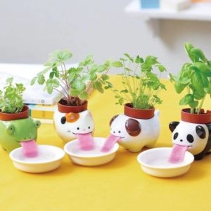 self-watering-pots for-plants-decorfo